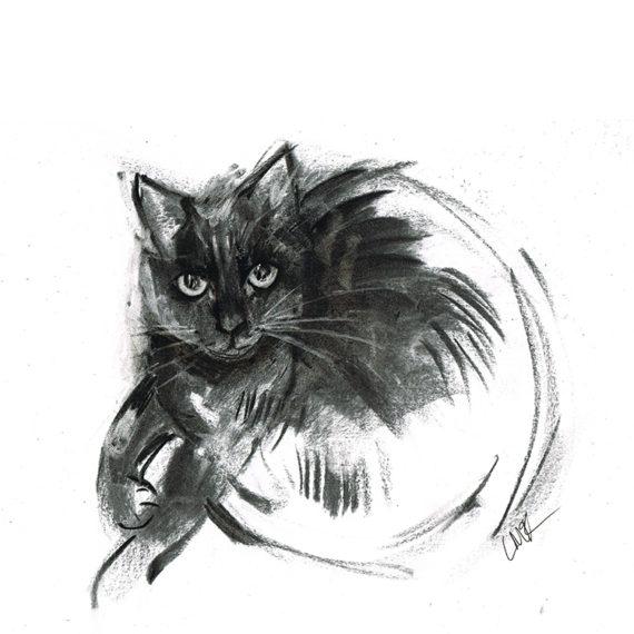 minnie black cat laura mckendry