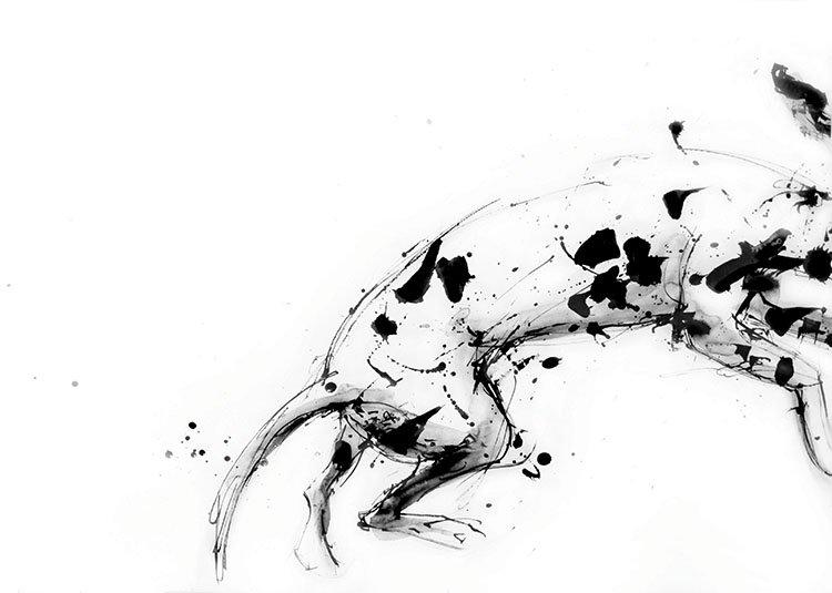 leaping dalmatian