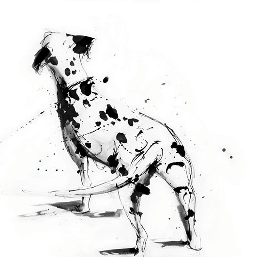 Dalmatian wagging tail