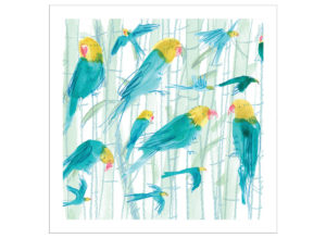 parakeets bamboo
