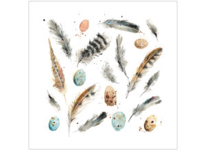Feathers & Eggs laura mckendry