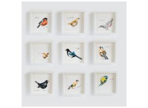 Garden birds - individual - laura mckendry