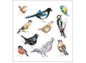 Garden birds laura mckendry