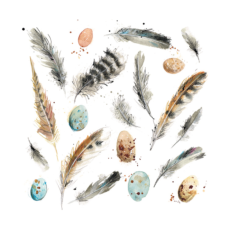Laura McKendry Feather & Eggs