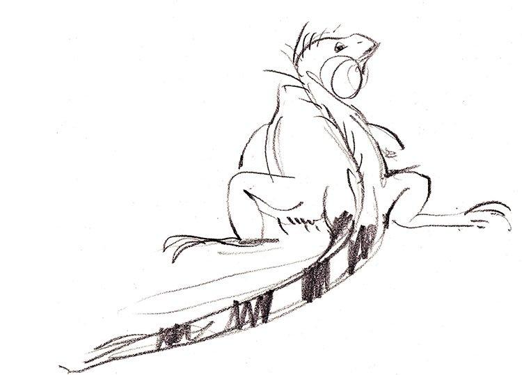 Lizard I