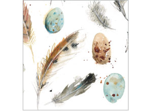Feathers & Eggs