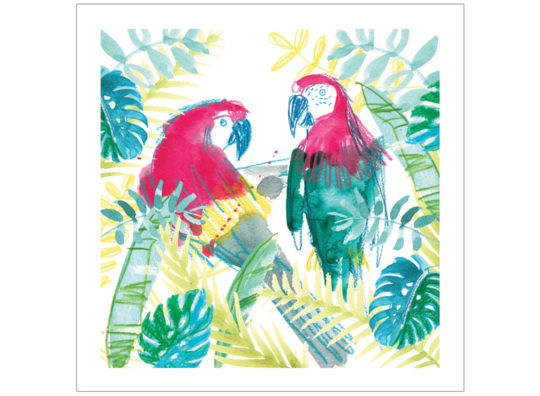 pair of parrots greeting card