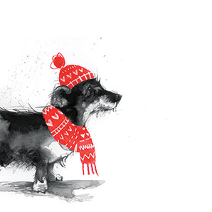 Christmas Mongrel