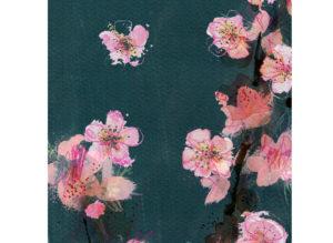 peach blossom laura mckendry close up