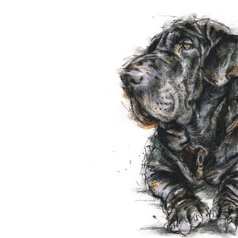 Bespoke pet or dog portrait.