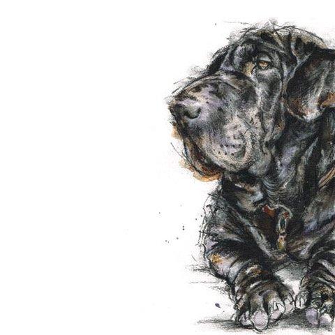 Bespoke pet or dog portrait.