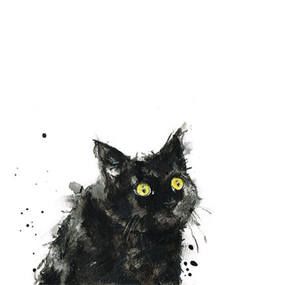 Cedric black cat laura mckendry