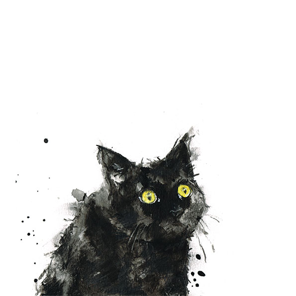 Cedric black cat laura mckendry