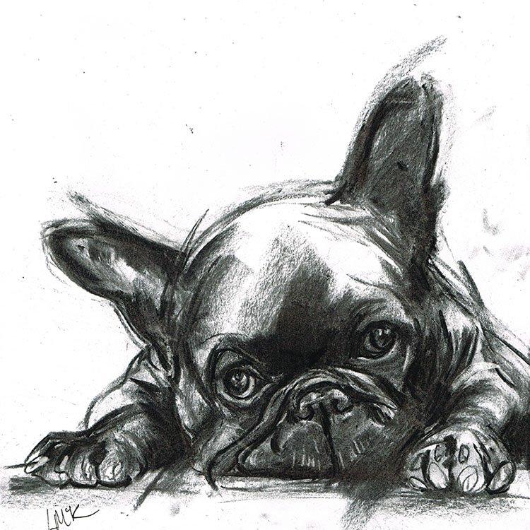 Reggie french bulldog laura mckendry
