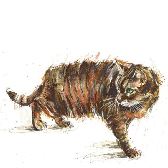 balancing tabby cat_laura mckendry