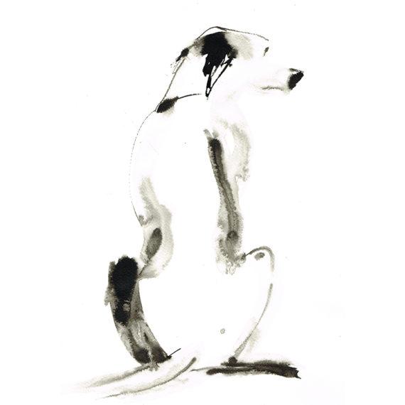 dalmatian no spots laura mckendry sq