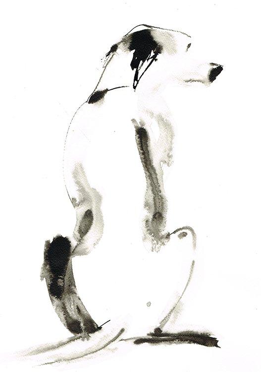 dalmatian no spots laura mckendry