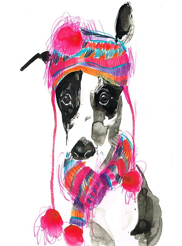 Greyhound in bobble hat