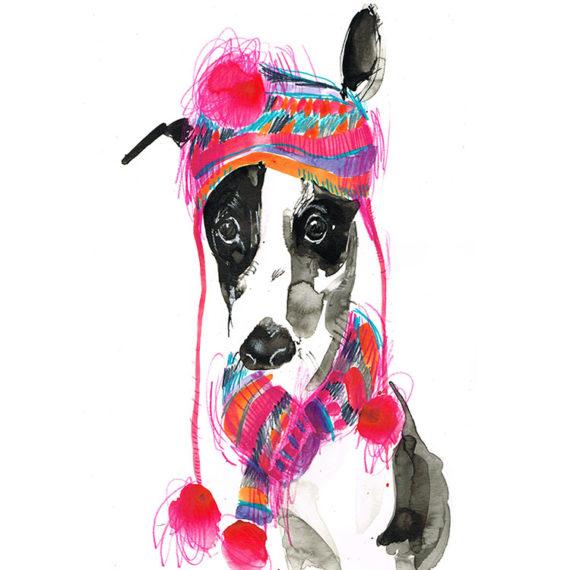Greyhound in bobble hat