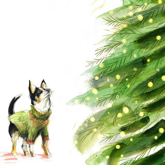 Chihuahua and tree