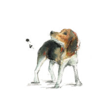Profile-Books-Fifteen-Dogs-illustrations-(c)-Laura-McKendry-7